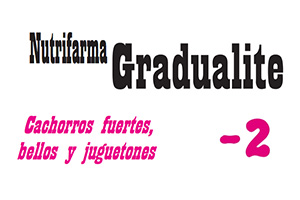 producto-1